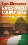 Fron-Goch Camp 1916 - And the Birth of the IRA